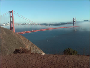 Let us take you sightseeing in San Francisco or through the Bay Area and make it an unforgettable moment.